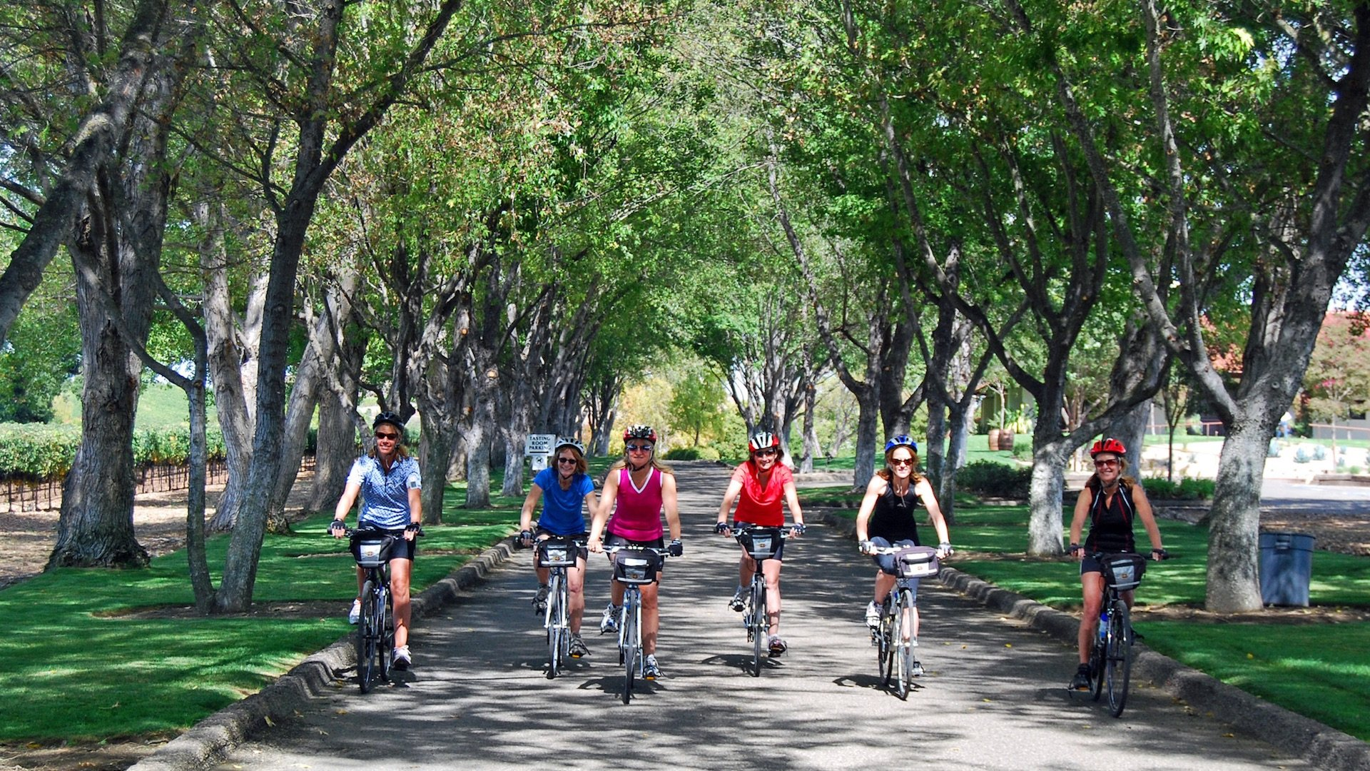 Solvang Meetings - Enjoy Cycling