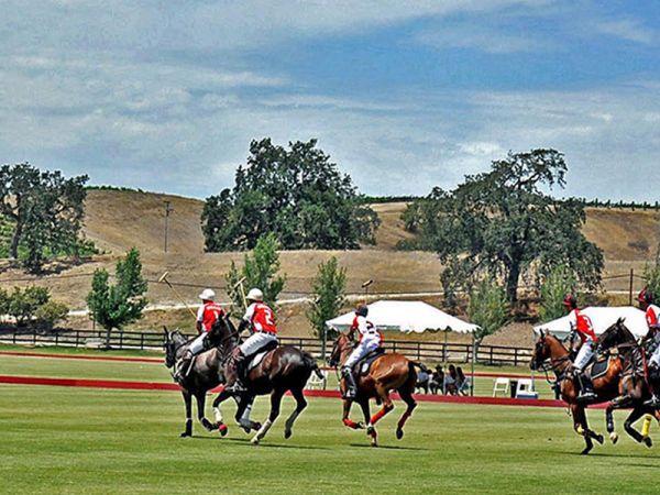 Polo-classic-santa-ynexz-valley