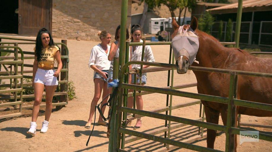 Vanderpump Rules at Bella Cavalli Farms